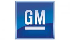 GM-web